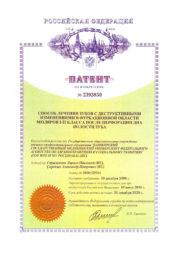 Патент №2393850